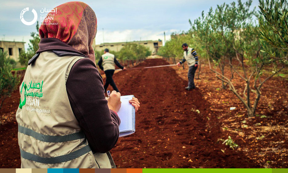 "IhsanRD team finishes tillage and seed stage within ""Intercropping"" project in the northern Homs countryside."