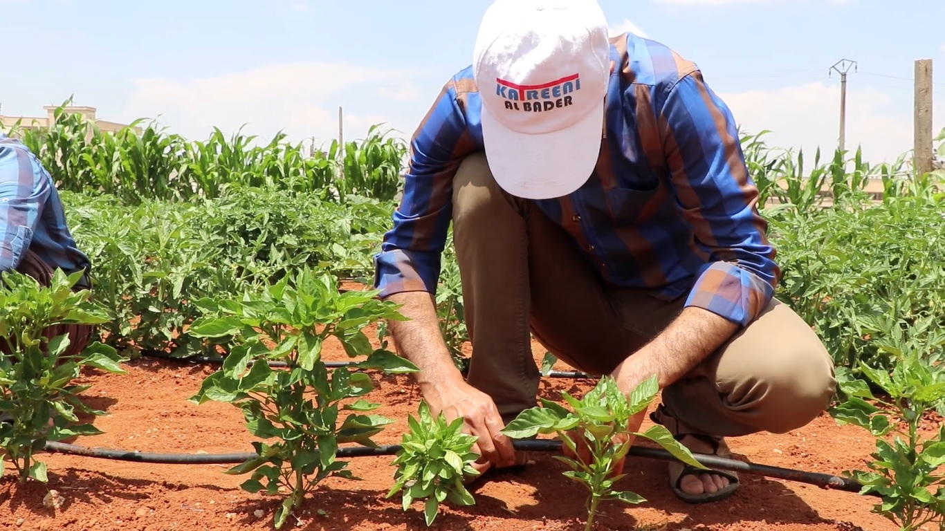 Story of Thabit – Home Gardening Project